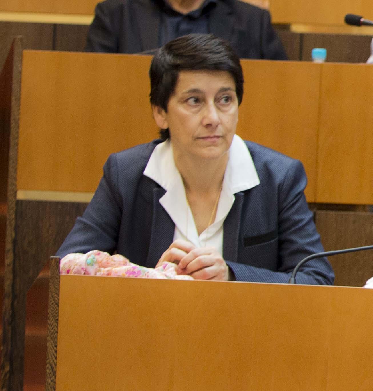 Assemblée de Corse - session des 27 et 28 juillet 2017