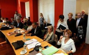 """Le Padduc va """"protéger la Corse sans nuire à son développement"""""""